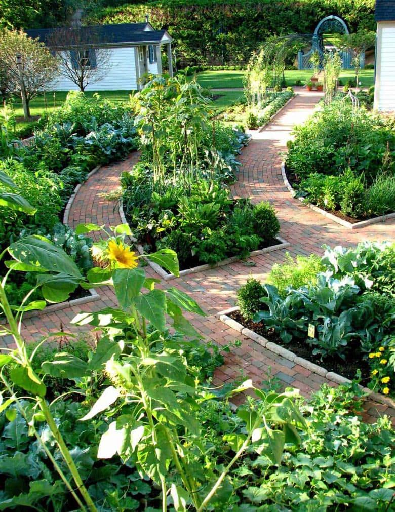 beautiful edible garden designs