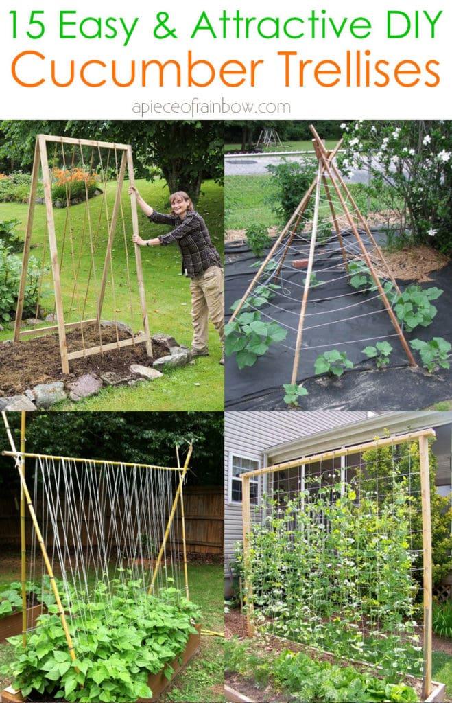 DIY cucumber trellis ideas