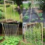 15 easy & attractive DIY cucumber trellis ideas on how to build vertical garden growing structures with simple materials for productive vegetable gardening!