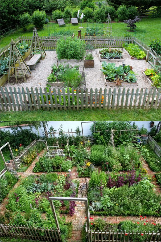 Image of: 8 Easy Steps To Start Your Best Vegetable Garden A Piece Of Rainbow