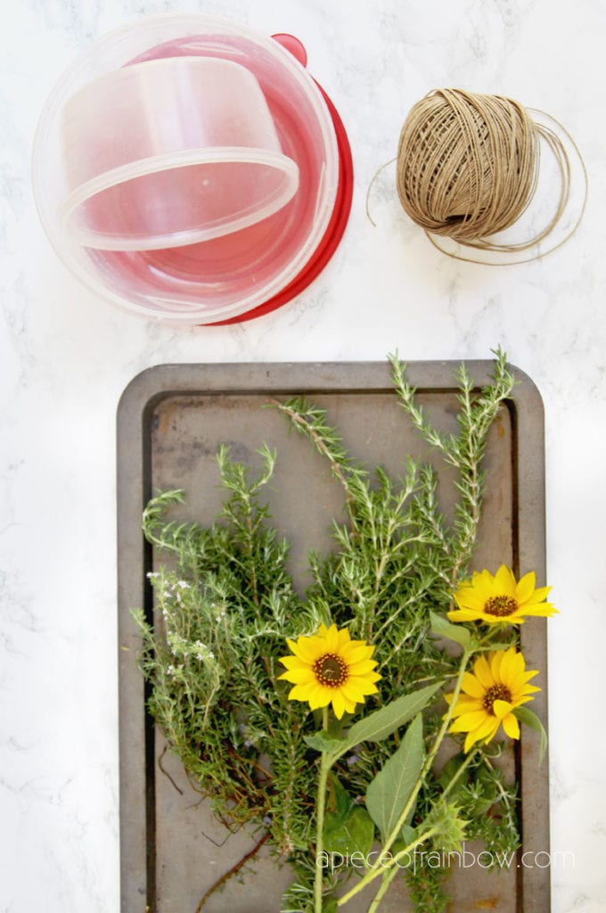gather rosemary to make wreaths