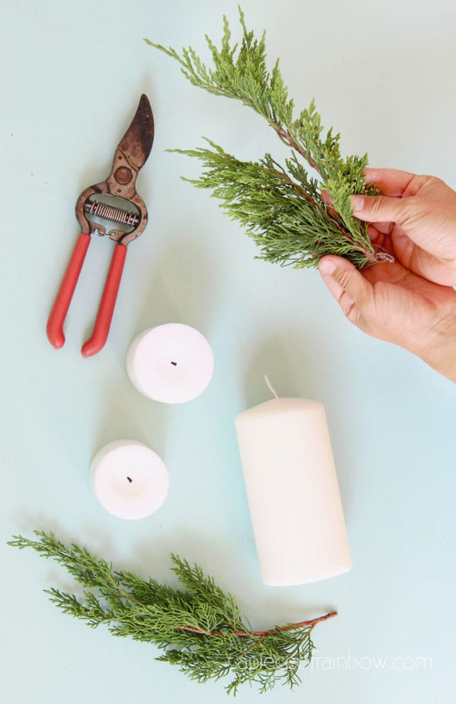 cut evergreen cedar clippings to decorate candles