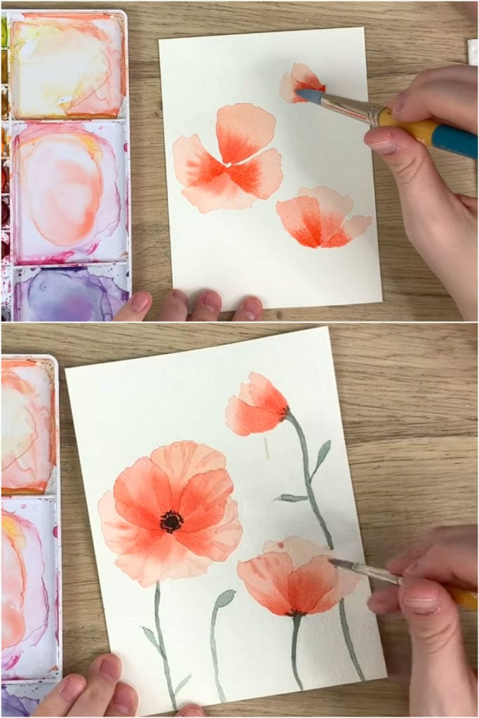 Watercolor poppies for beginners