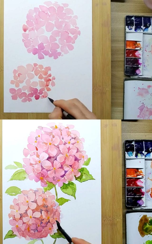 paint Watercolor Hydrangea flowers