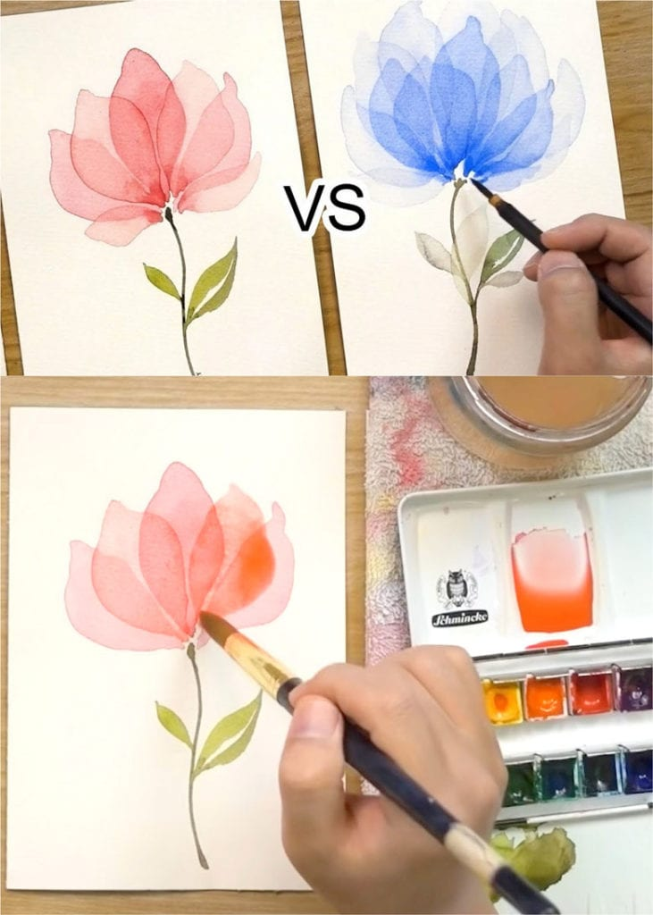 How to paint watercolor flowers with transparent layers
