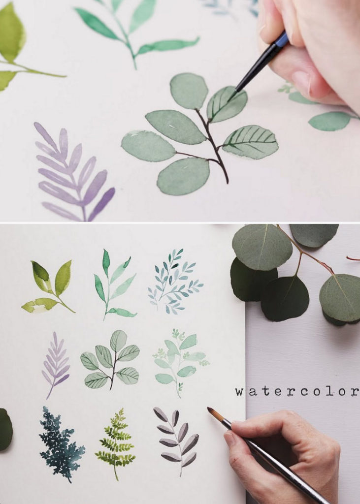 Watercolor leaf shapes and colors
