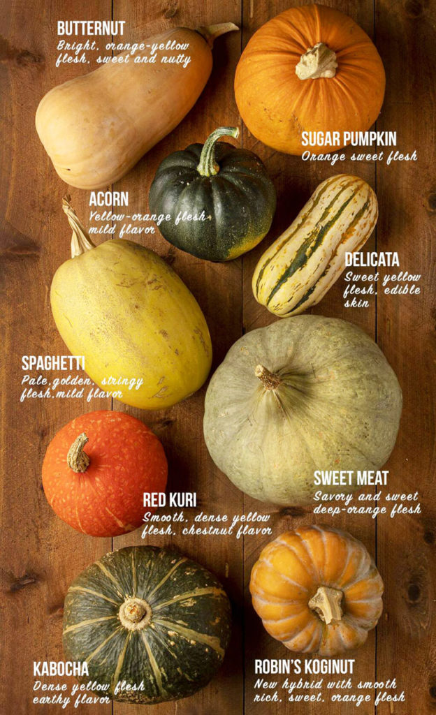 sweet and delicious winter squash and pumpkin varieties such as buttercup, Sweetmeat, Blue Hubbard,