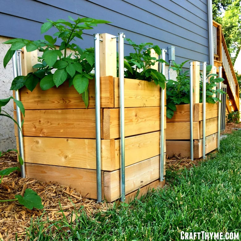DIY wood potato planter box