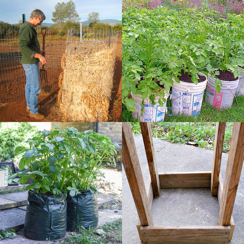 how to plant potatoes in containers, and choosing the best grow bags, buckets, pots, boxes, etc