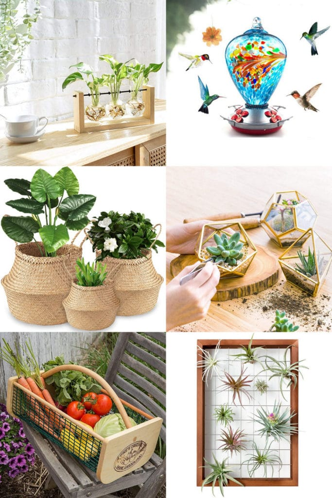 Mother's Days gifts for mom who loves nature and decor