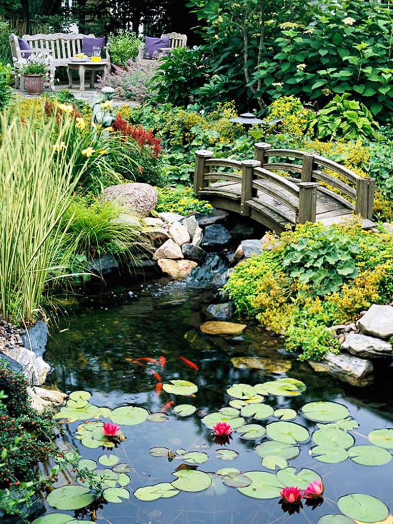 wooden bridge over a garden pond with fish and lily