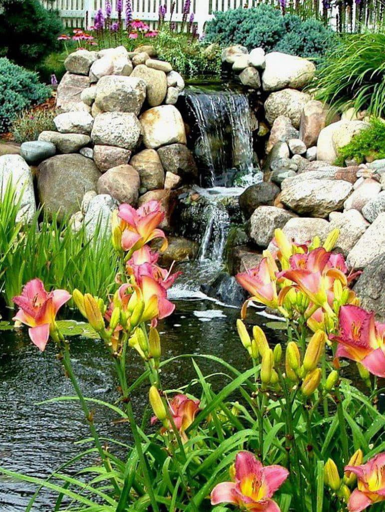 garden pond and waterfall with rocks, plants and flowers