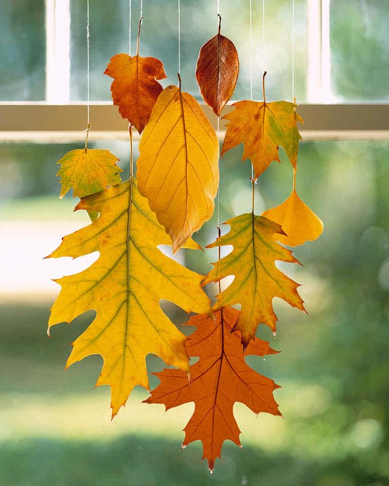 Cómo conservar las hojas otoñales con cera,