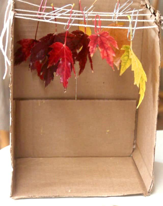 hojas de otoño bañadas en cera para manualidades y decoración